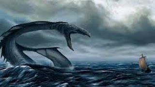 Кто живёт на дне океана? | Аденская аномалия | Документальный фильм 2015