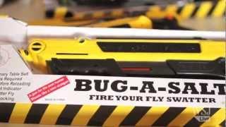 Fly No More: DIY Solution To Pesky Flies