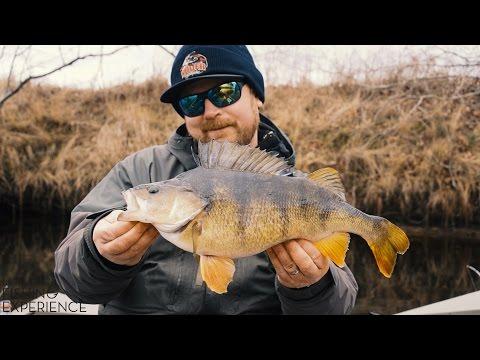 Jiggfiske efter stor abborre - Glen Grant Fishing Experience