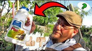 Organic Gardening Pest Control | Product Review (Sluggo Plus) | Does It Work?