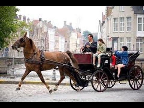 Brugges Horse And Carriage