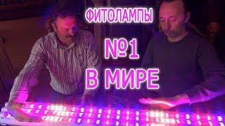 видео Светодиодные светильники для растений