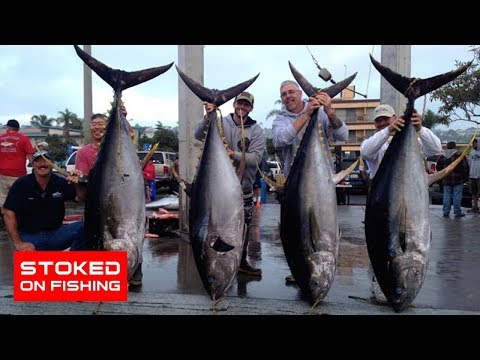 Tuna, Dorado, Wahoo, And Marlin Fishing On The Intrepid | Part 3