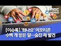 [이슈톡] '화나요' 이모티콘 수백 개 받은 딸…숨진 채 발견 (2019.09.19/뉴스투데이/MBC)