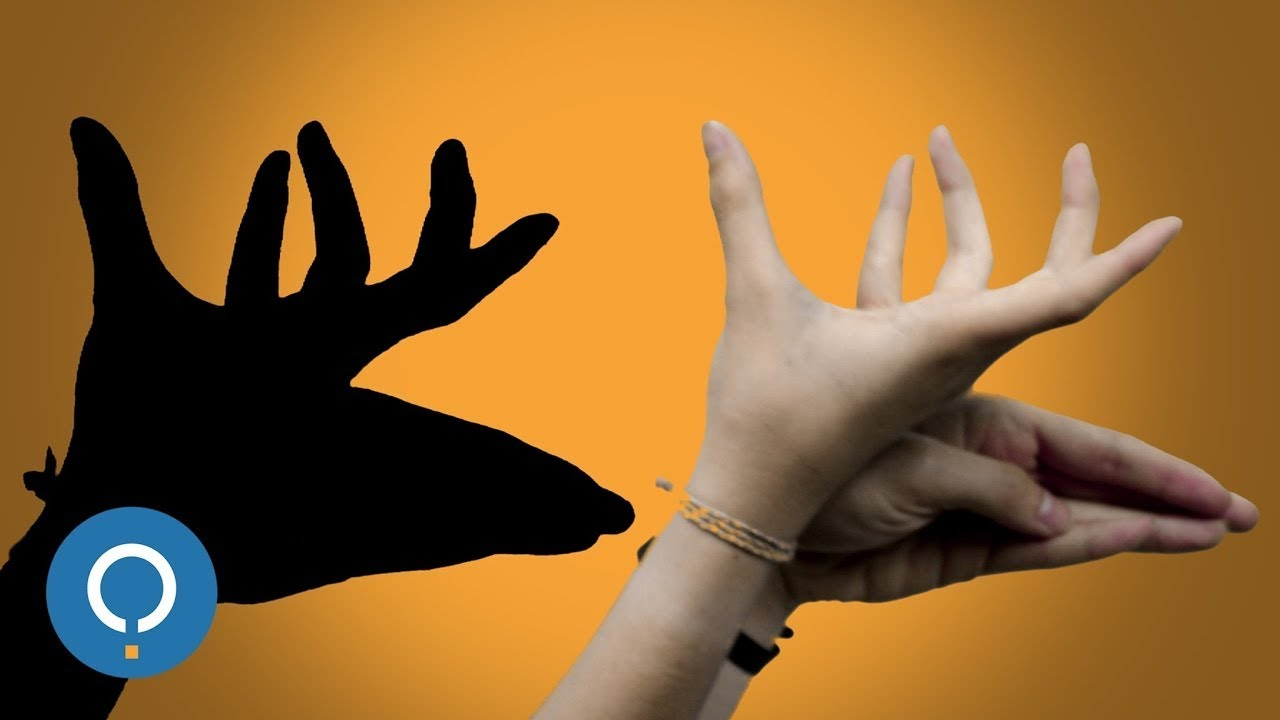 how to make shadow animals with your hands youtube