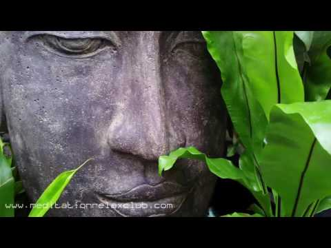 8 HOURS: Asian Meditation Background Music, Mindfulness, Relaxation