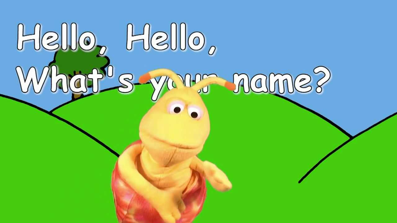 your name or the name of