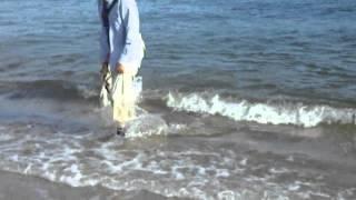 2歳0ヶ月メス。久しぶりに海に行ったら、靴を脱ぐ前に引きずられてし...