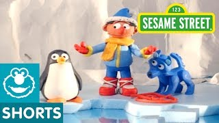Sesame Street: Penguin | Bert and Ernie's Great Adventures