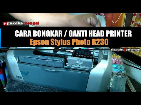 Cara Bongkar Dan Ganti Head Printer Epson Stylus Photo R230 How To