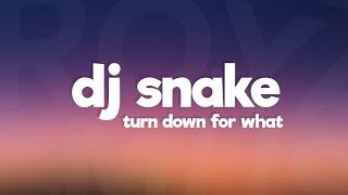DJ Snake, Lil Jon - Turn Down for What (Lyrics)