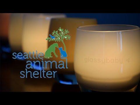 Seattle Animal Shelter | Glassybaby