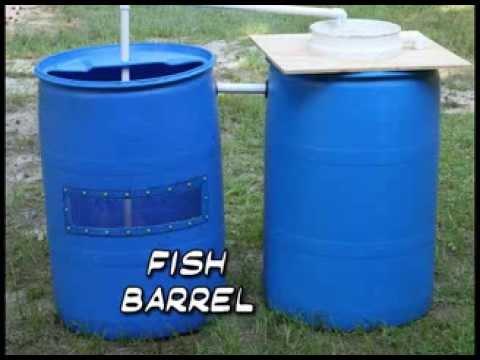 Recirculating Aquaculture System Made from Barrels (Barrelponics)