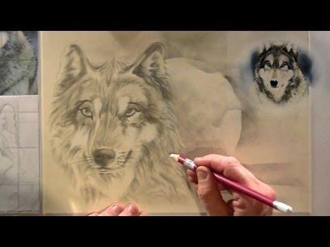 Hoe Teken Je Een Wolf Dieren Tekenen 6 Youtube