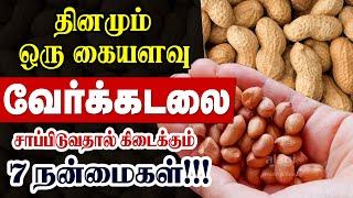 Top Health Benefits of Groundnuts | Peanut Nilakadalai | Verkadalai | Mallatai