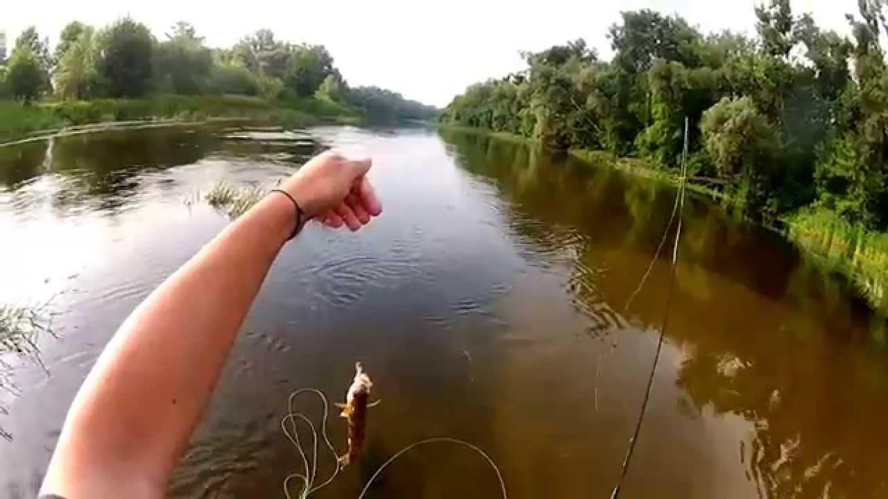 элитная рыбалка киев