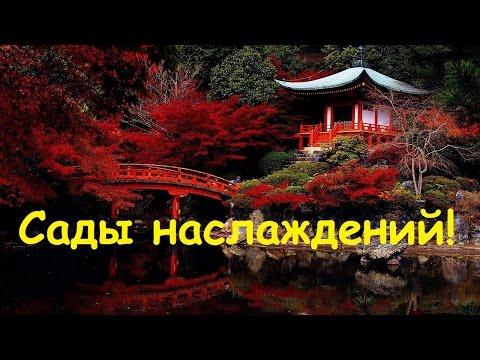 ArcheAge 2.9: Сады наслаждений! Полное прохождение!