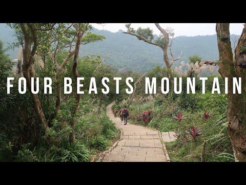 Taipei Travel - Four Beasts Mountain Elephant Mountain Hiking Tour In Taiwan Vlog - 47 Part 1