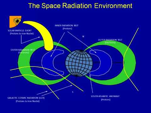 Biological Issues in Space Radiation Protection with Shielding