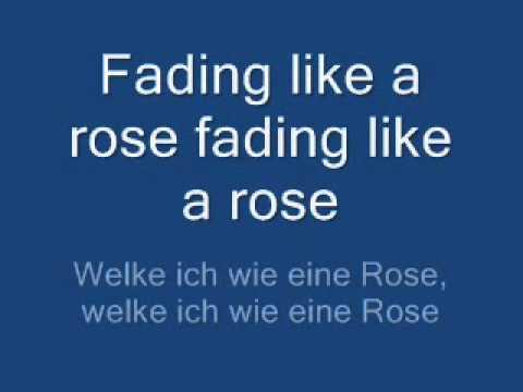 fading like a flower  roxette lyrics + übersetzung