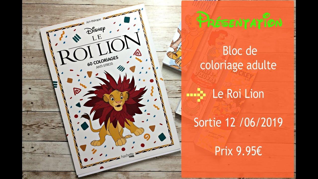 Présentation Le Roi Lion Bloc Hachette Coloriage Adulte