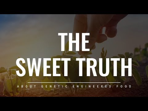 The Sweet Truth About Genetic Engineered Food