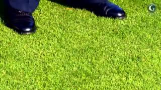 Golf Galaxy - Fitters