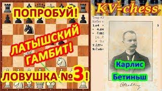 Латышский гамбит Ловушки в шахматах 3 в дебюте Видео для начинающих