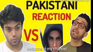 My opinion about Ducky Bhai And Shaam Idrees fight | Mr. Vloge |