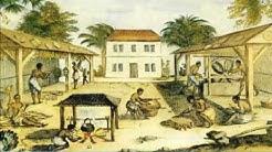 Atlantic slave trade | Slavery | Involuntary immigrants