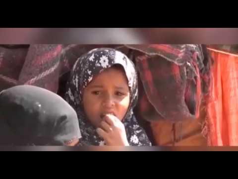 Just a reminder > ريبورتاج مشروع الحماية والغذاء 2018