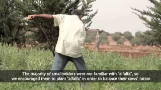 Projet Hlibna (Milkyway) vidéo  1