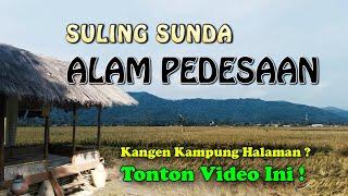 Download Mp3 Suling Sunda Alam Pedesaan