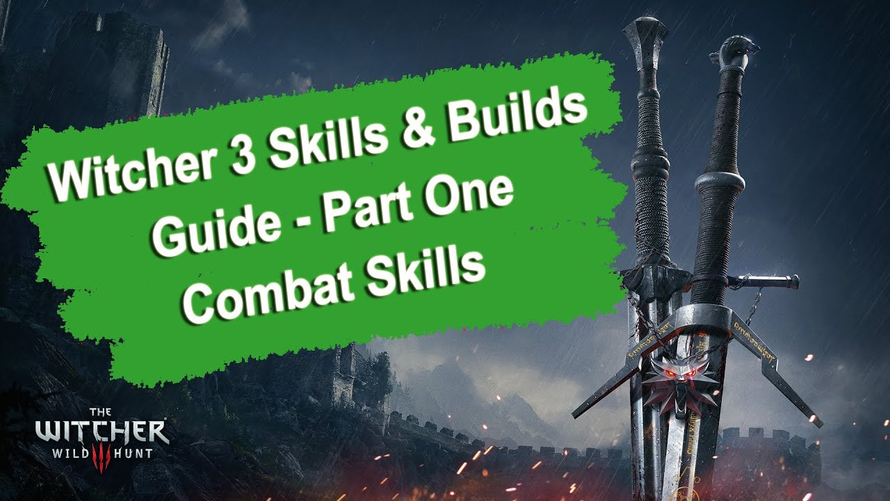 The Witcher  Builds Guide