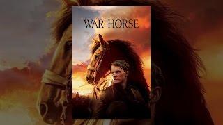 حصان الحرب
