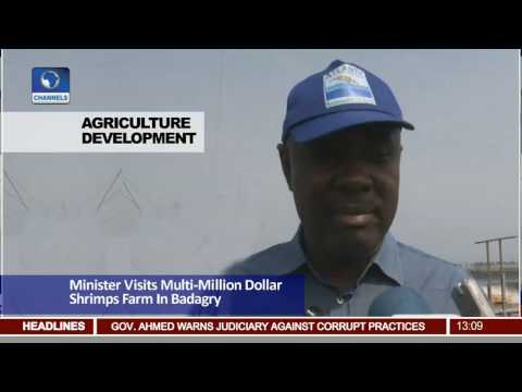Minister Visits Multi million Dollar Shrimps Farm In Badagry