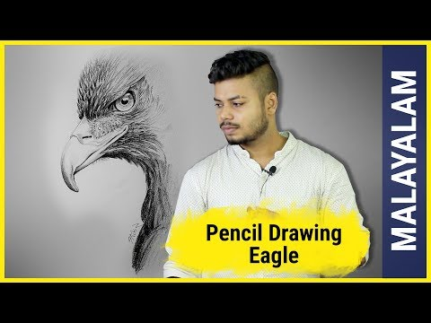 eagle-pencil-drawing-|-malayalam-art-tutorial-#8
