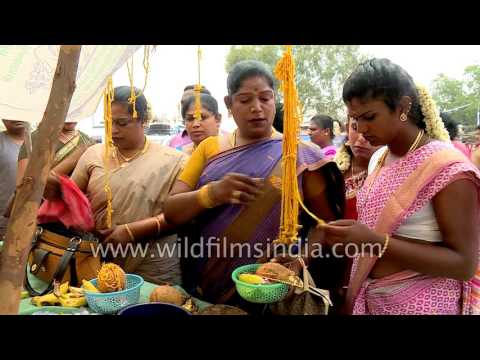 Transgenders shop for the Koovagam festival, India