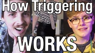 Milo (Quinby) How Triggering Works || We Roast An SJW