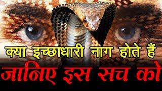 क्या इच्छाधारी नाग होते हैं, जानिए इस सच को... What is Ichchadhari Nagin