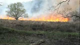 Brand op