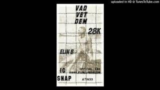 28K - Vad vet dom ( Feat - Elin B )