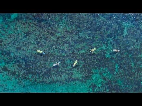 南房総 勝浦の海 - Beaches at Katsuura Boso - ドローン撮影 - DJI phantom 3 professional drone footage -