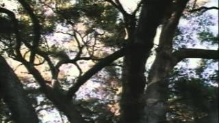 Grace Of My Heart Trailer 1996