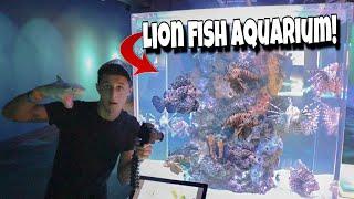 invasive-lion-fish-breeding-aquarium