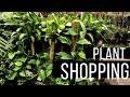 Houseplant Shopping Tour + Vlog | Home Depot | Garden Center