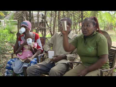 Shamba Shape Up Sn 06 - Ep 21 Baobab Nutrition, Mango Post Harvest, Kenbro Chicken (Swahili)