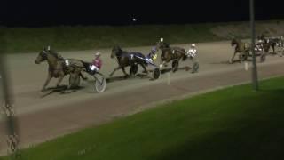 Vidéo de la course PMU PRIX DE DUINDIGT (BRONZE CHALLENGE)