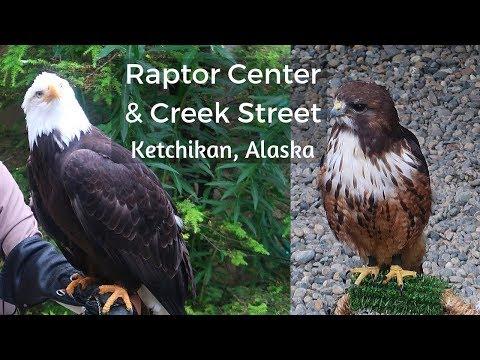 Ketchikan Shore Excursion Visit To Alaska Raptor Center And Creek Street
