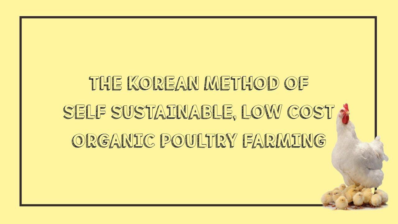 Korean Method I Organic Poultry Farming